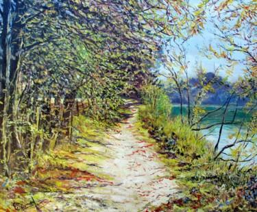 Les rives du Cher à Montrichard (Loir et Cher)