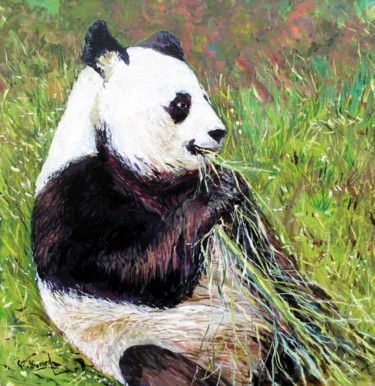 Le Panda de Beauval le male panda YAN ZI savourant du bambou