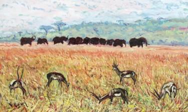 Dans la plaine du Tsavo (Kenya)