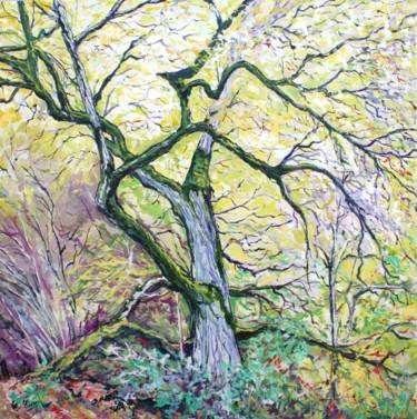 L'arbre moussu