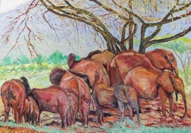 Le domaine des éléphants (réserve du Tsavo au Kenya)