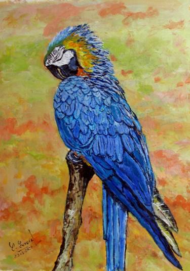 Le perroquet bleu en colère