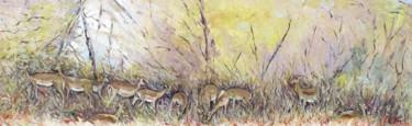 Le troupeau d'impalas (Parc du Tsavo-Kenya)
