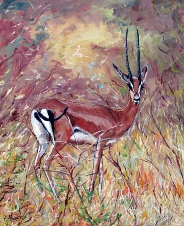 La gazelle (réserve du Tsavo-Kenya)